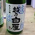 にいがた酒の陣 中川酒造 越乃白雁 純米吟醸 越淡麗 無濾過生原酒