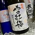 にいがた酒の陣 長谷川酒造 雪紅梅 特別純米酒