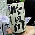 にいがた酒の陣 代々菊醸造 吟田川 特別本醸造