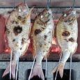 魚バーベキュー