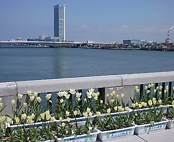 チ万代橋チューリップフェステバル 2007
