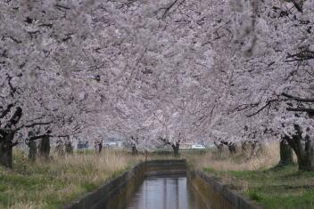安田浄水場