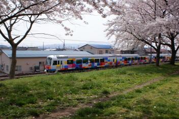 新発田中央公園