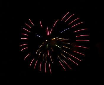 第77回土浦全国花火競技大会 ブタもおだてりゃ木にのぼる(北日本煙火興業:秋田)