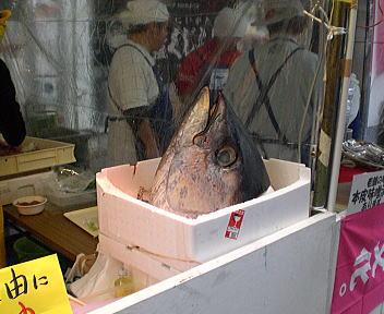にいがた食の陣 秋の収穫祭 鈴木鮮魚 まぐろカマ