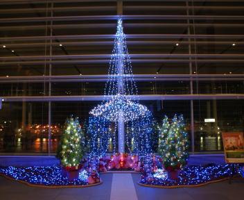 朱鷺メッセ クリスマスイルミネーション