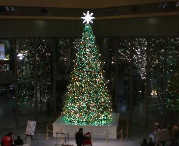 新丸ビル クリスマスツリー