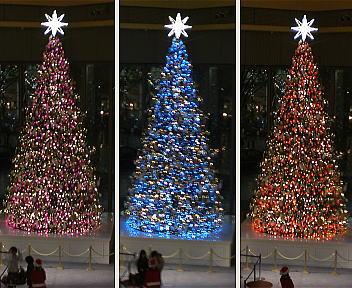 新丸ビル クリスマスツリー カラー