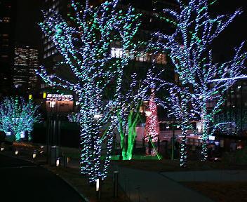 赤坂TBS前 クリスマスイルミネーション