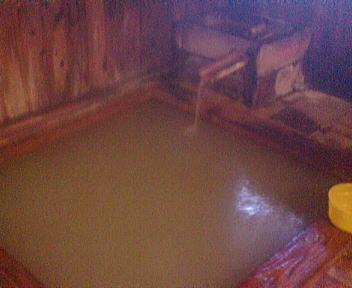 泥湯温泉 奥山旅館 天狗の湯 内湯