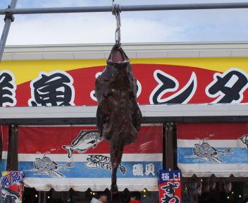 糸魚川荒波あんこう祭り あんこう吊るし切り実演 開始前
