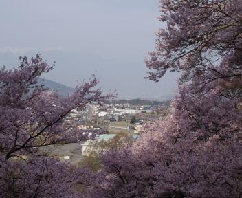 高遠城址公園 高遠町の眺め