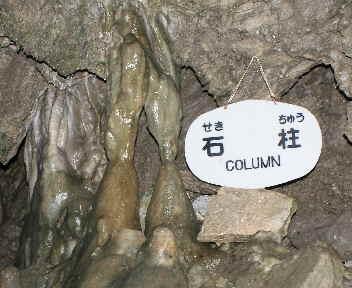 龍泉洞 石柱