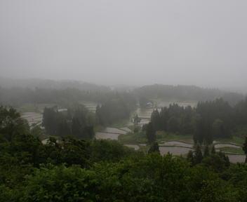 栃窪の棚田