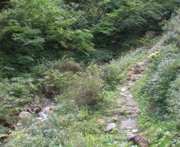 河原の湯 通路