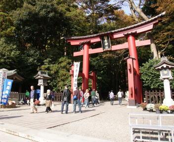 弥彦菊まつり 神社入口