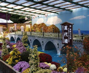 弥彦菊まつり 大風景花壇