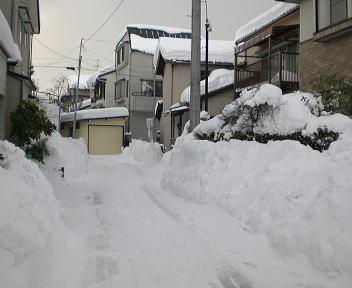 新潟の大雪2010 自宅近く