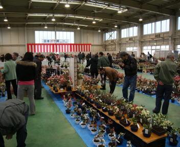 日本ボケ展