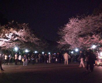 上野公園 春