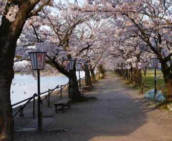 瓢湖水きん公園
