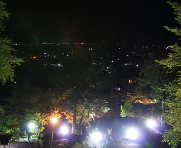 楽山苑ライトアップ 景色