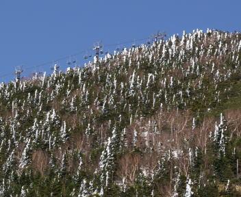 志賀高原 季節外れの雪