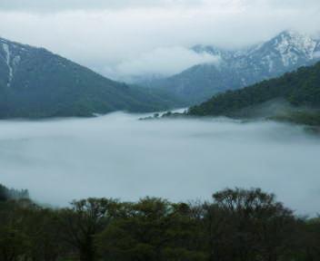 笹ヶ峰 林道 雲海