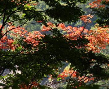 湯俣温泉 高瀬ダム 景色