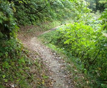 湯の平温泉 登山道①