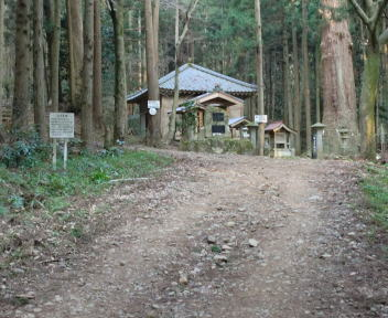 角田山 稲島コース①