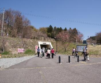 三春滝桜 連絡通路