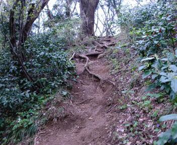 角田山 湯の腰コース⑤