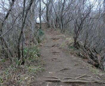 角田山 湯の腰コース⑬