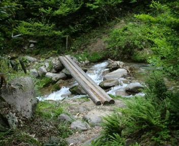 松平山 魚止め滝丸太橋