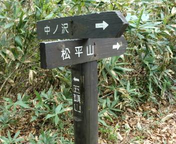 五頭山 杉峰分岐