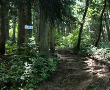 二王子岳 登山コース 1合目