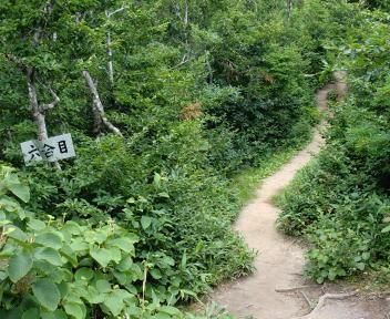 二王子岳 登山コース 6合目