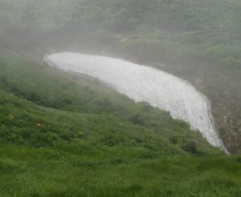 二王子岳 登山コース お花畑の残雪