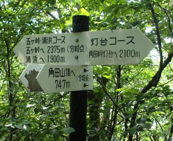 角田山 浦浜コース ⑪