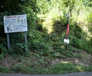 角田山 五りん石コース 林道登山口