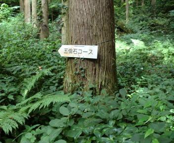 角田山 五りん石コース②