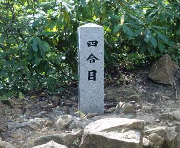 弥彦山 表参道ルート ⑨
