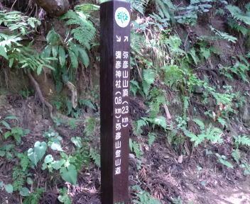 弥彦山 表参道ルート ④
