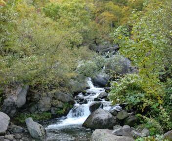 火打山 黒沢渓流