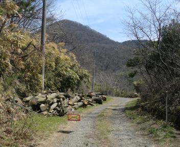 角田山 此の入沢コース ⑯