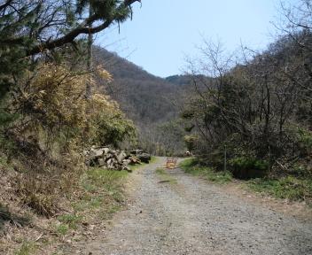 角田山 此の入沢コース ①