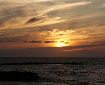 海辺の森 今日の夕焼け