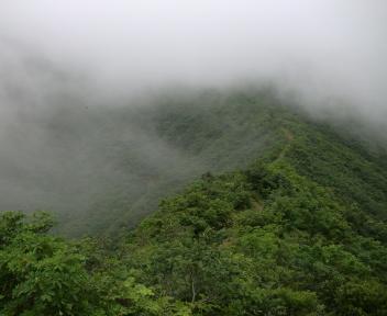 粟ヶ岳 下田小俣登山道 ⑰