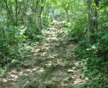 宝珠山 赤松山コース ④